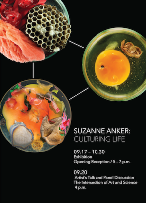 2015-17-09-Suzanne-anker-culturing-life