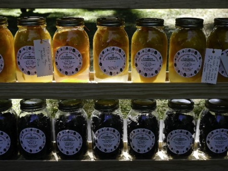 Lorusso-potential-energy-carbon-conserves-jars